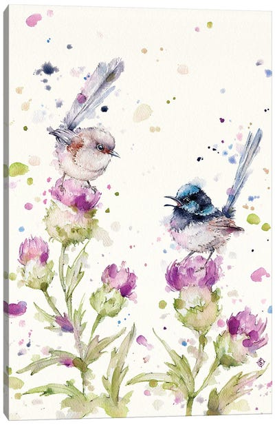 Yes Darling I See You There (Fairy Wrens) Canvas Art Print