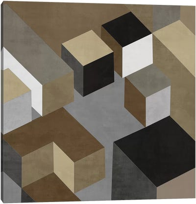 Cubic In Neutral I Canvas Art Print