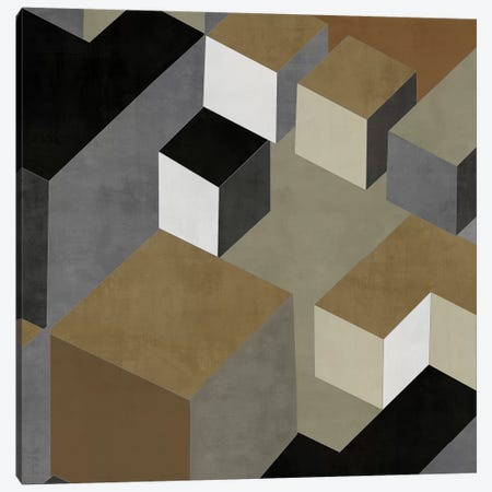Cubic In Neutral II Canvas Print #SIM6} by Todd Simmons Canvas Print