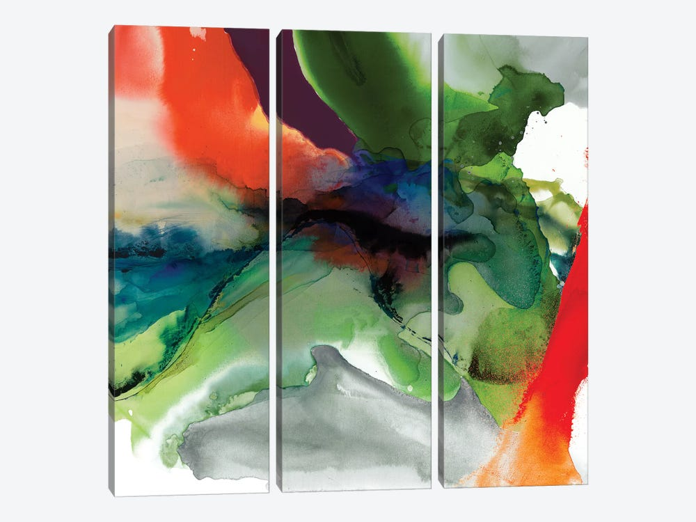 Vibrant Terrain II by Sisa Jasper 3-piece Canvas Art