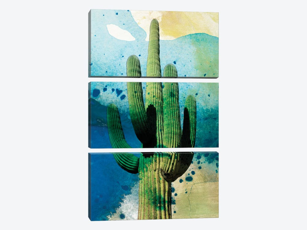 Cactus Abstract by Sisa Jasper 3-piece Canvas Art Print