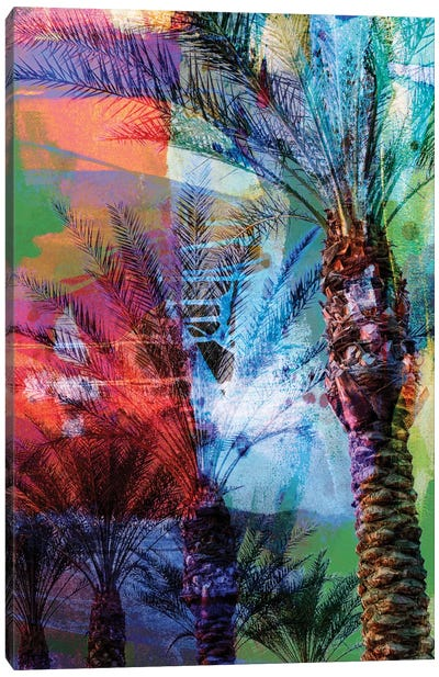 Desert Palm Abstract Canvas Art Print