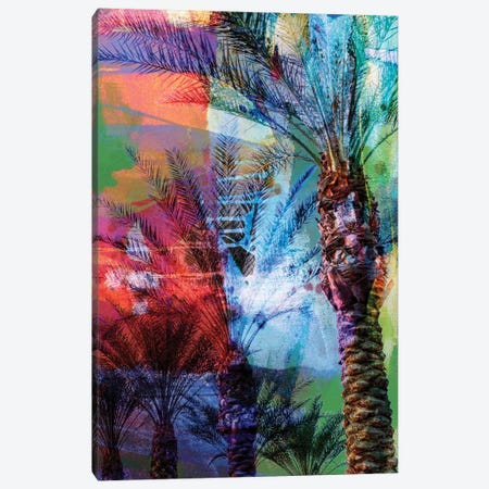 Desert Palm Abstract Canvas Print #SIS13} by Sisa Jasper Canvas Art Print