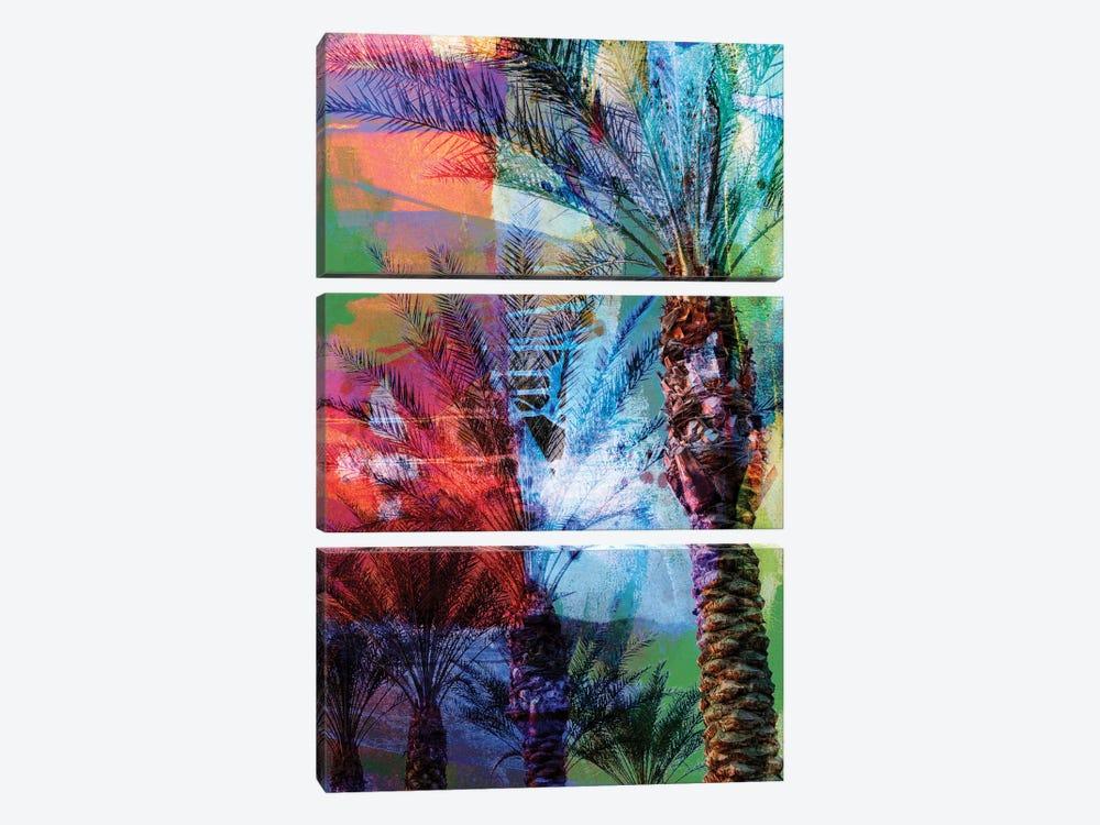 Desert Palm Abstract by Sisa Jasper 3-piece Canvas Wall Art