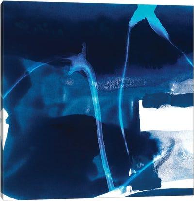Tidal Atmosphere I Canvas Print #SIS26