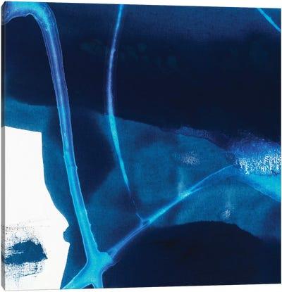 Tidal Atmosphere II Canvas Print #SIS27