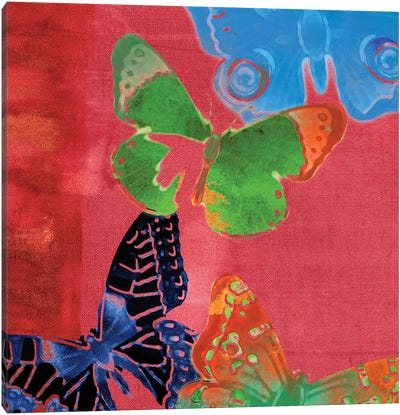 Saturated Butterflies I Canvas Art Print