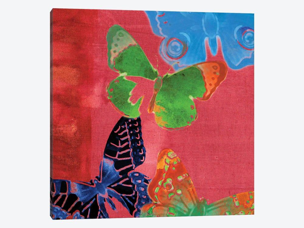 Saturated Butterflies I by Sisa Jasper 1-piece Canvas Art Print