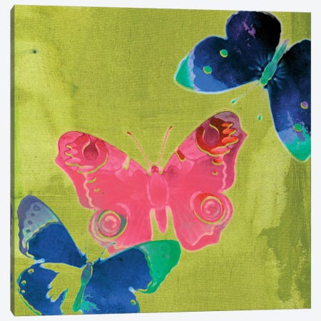 Saturated Butterflies II Canvas Print #SIS53} by Sisa Jasper Art Print