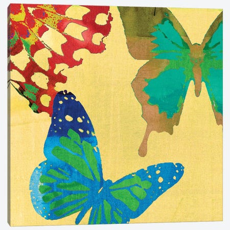 Saturated Butterflies III Canvas Print #SIS54} by Sisa Jasper Canvas Artwork