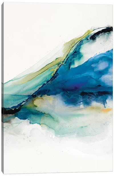 Abstract Terrain IV Canvas Art Print