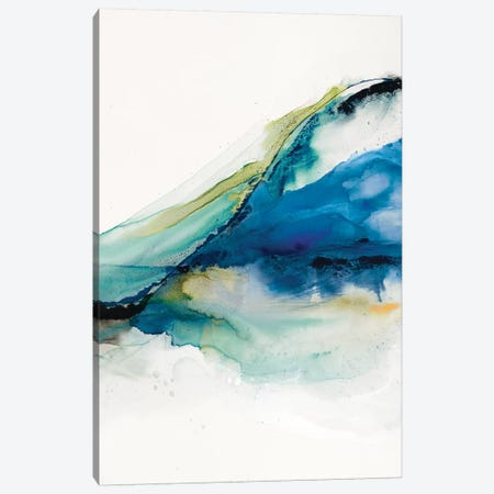 Abstract Terrain IV Canvas Print #SIS59} by Sisa Jasper Canvas Art Print