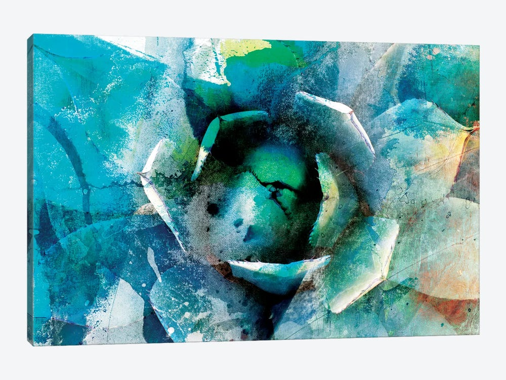 Agave Abstract I by Sisa Jasper 1-piece Art Print