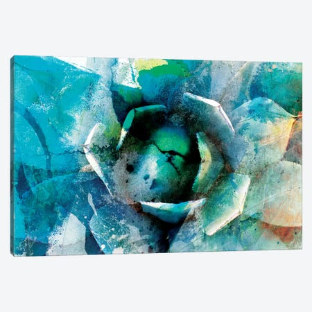 Agave Abstract I Canvas Print #SIS5} by Sisa Jasper Canvas Wall Art