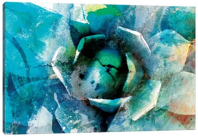 Agave Abstract I Canvas Art Print