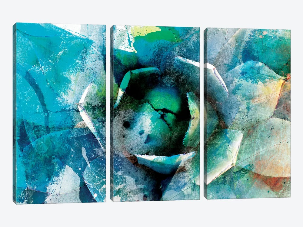Agave Abstract I by Sisa Jasper 3-piece Art Print
