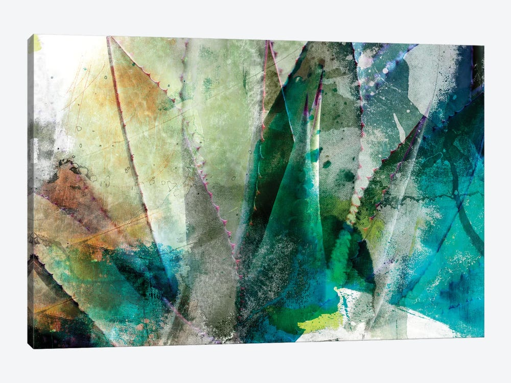 Agave Abstract II by Sisa Jasper 1-piece Canvas Art