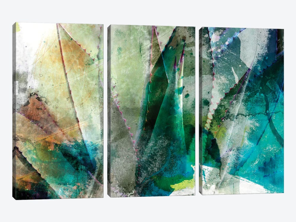 Agave Abstract II by Sisa Jasper 3-piece Canvas Wall Art