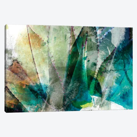 Agave Abstract II Canvas Print #SIS6} by Sisa Jasper Canvas Wall Art