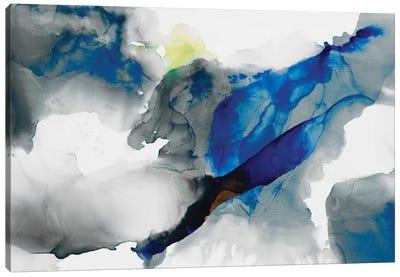 Ephemeral I Canvas Art Print