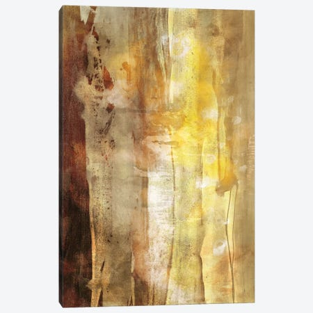 Golden Glow I Canvas Print #SIS77} by Sisa Jasper Canvas Art