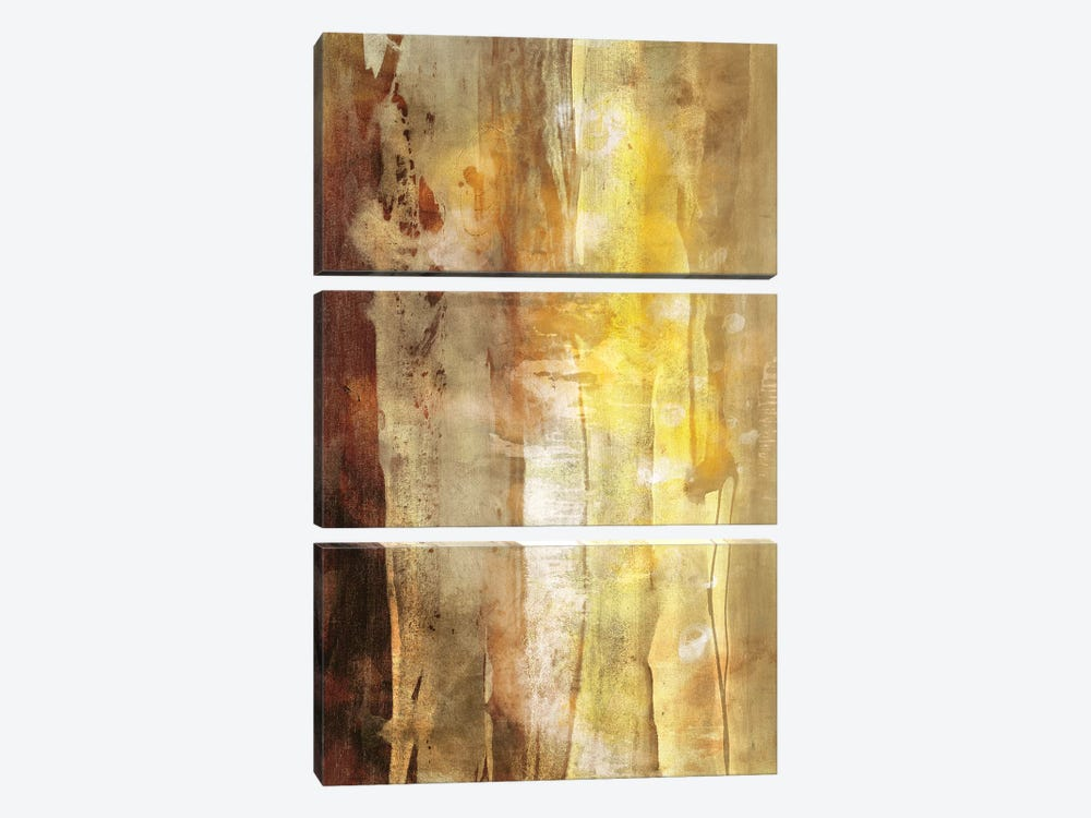 Golden Glow I by Sisa Jasper 3-piece Canvas Wall Art