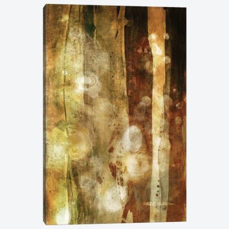 Golden Glow II Canvas Print #SIS78} by Sisa Jasper Canvas Print