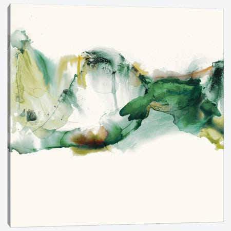 Green Terrain II Canvas Print #SIS80} by Sisa Jasper Canvas Art