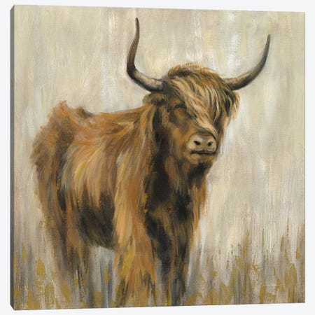 Highland Mountain Cow Canvas Print #SIV104} by Silvia Vassileva Canvas Artwork