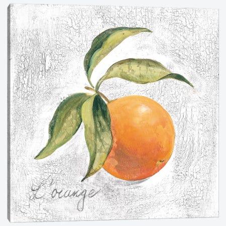 L Orange on White Canvas Print #SIV105} by Silvia Vassileva Canvas Art