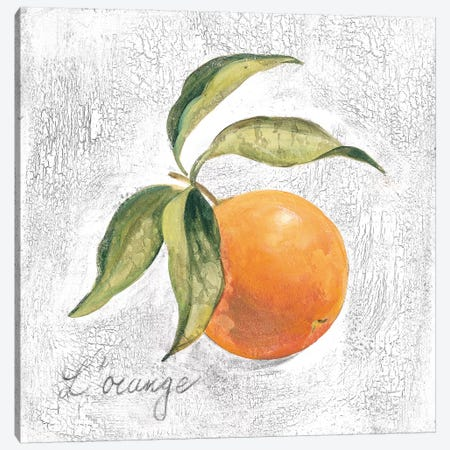L Orange on White Canvas Print #SIV105} by Silvia Vassileva Canvas Art