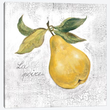 La Poire on White Canvas Print #SIV106} by Silvia Vassileva Canvas Wall Art