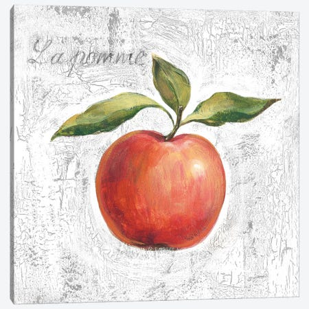 La Pomme on White Canvas Print #SIV107} by Silvia Vassileva Canvas Artwork