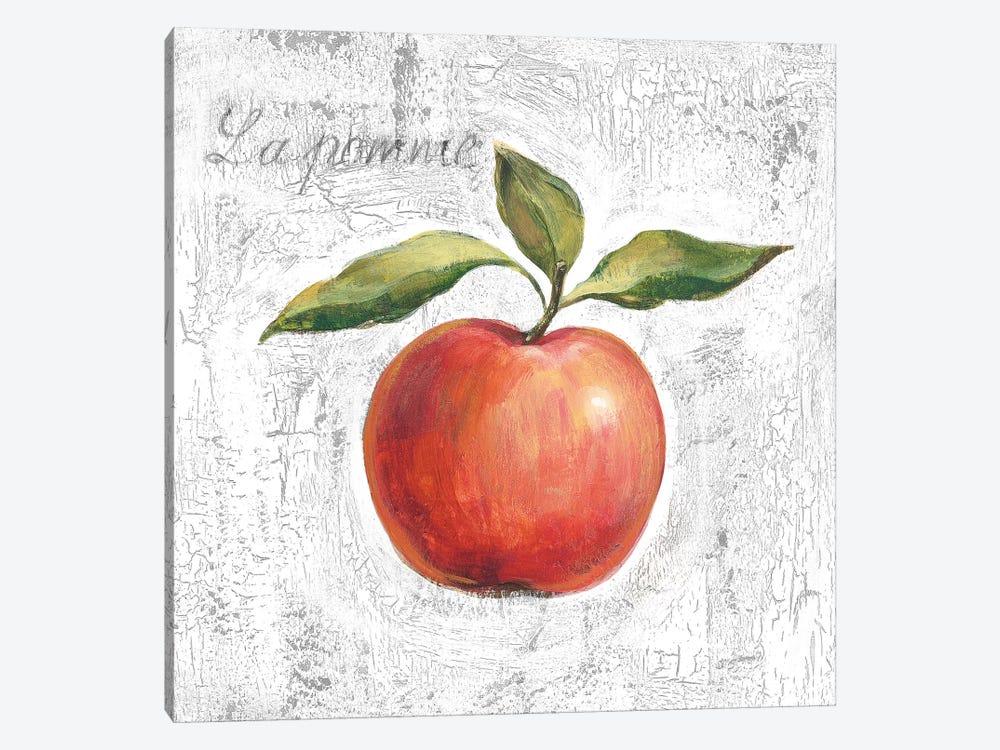 La Pomme on White by Silvia Vassileva 1-piece Canvas Wall Art