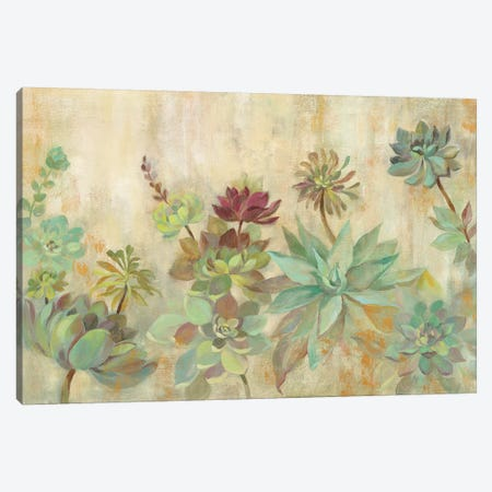Succulent Garden 3-Piece Canvas #SIV10} by Silvia Vassileva Canvas Wall Art