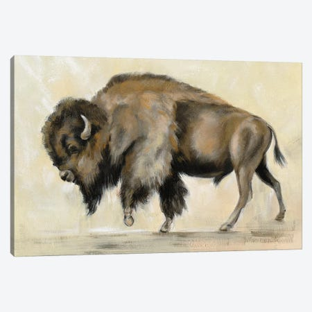 Bronze Buffalo Canvas Print #SIV119} by Silvia Vassileva Canvas Wall Art