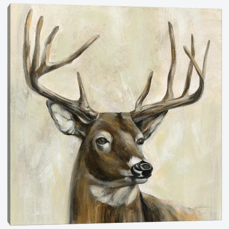 Bronze Deer Canvas Print #SIV120} by Silvia Vassileva Canvas Art Print