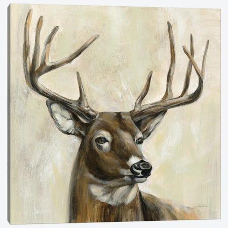 Bronze Deer Canvas Print #SIV120} by Silvia Vassileva Canvas Art Print