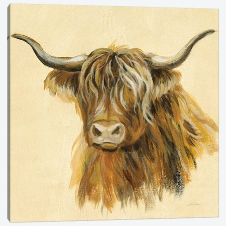 Highland Animal Cow Canvas Print #SIV124} by Silvia Vassileva Canvas Wall Art