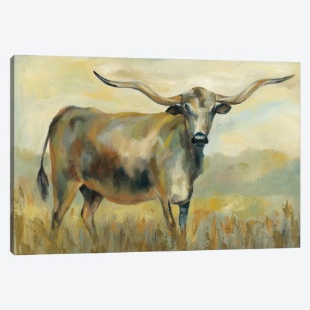 Longhorn Cow Canvas Print #SIV130} by Silvia Vassileva Canvas Art
