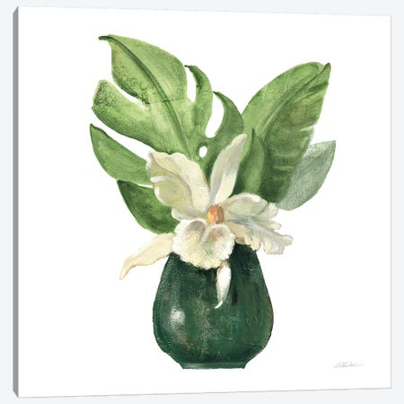 Tropical Leaves I on White Canvas Print #SIV133} by Silvia Vassileva Canvas Artwork