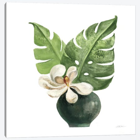Tropical Leaves II on White Canvas Print #SIV134} by Silvia Vassileva Canvas Art Print