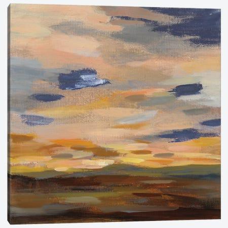 High Desert Sky III Navy Canvas Print #SIV163} by Silvia Vassileva Art Print