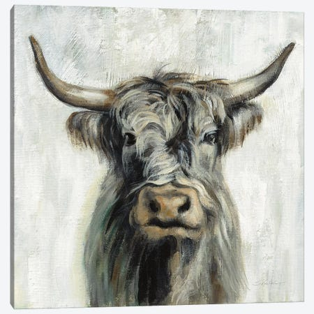Highland Cow Canvas Print #SIV170} by Silvia Vassileva Canvas Wall Art