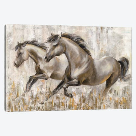 Running Horses Canvas Print #SIV183} by Silvia Vassileva Art Print