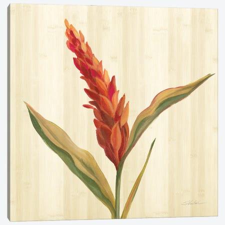 Tropical Garden II Canvas Print #SIV268} by Silvia Vassileva Canvas Wall Art