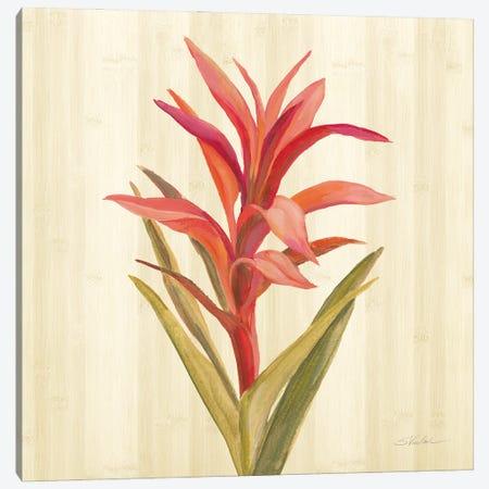 Tropical Garden III Canvas Print #SIV269} by Silvia Vassileva Canvas Art