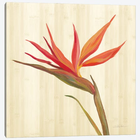Tropical Garden IV Canvas Print #SIV270} by Silvia Vassileva Canvas Art Print