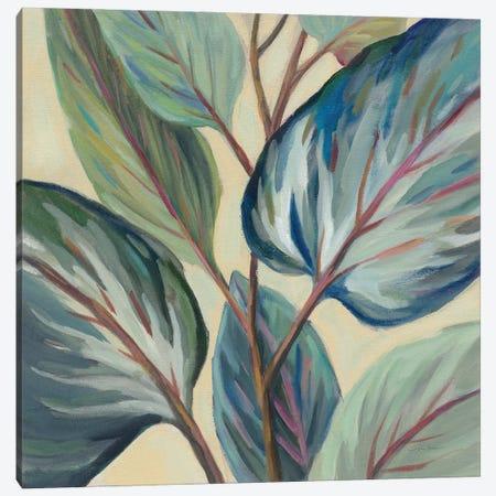 Greenhouse Leaves Canvas Print #SIV289} by Silvia Vassileva Canvas Wall Art