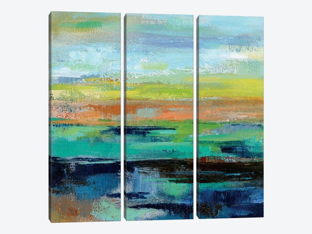 Delmar Sunset III by Silvia Vassileva 3-piece Canvas Art
